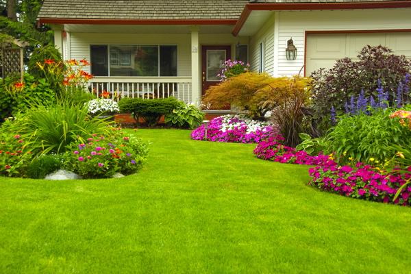 Aménagement du jardin, les erreurs à éviter | Artisan-métierdart